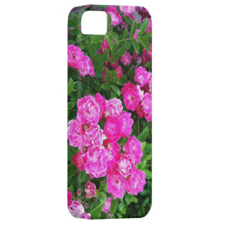Martha's Vineyard Roses Other Worldly Pink iPhone SE/5/5s Case