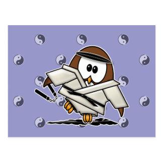 martial art owl postcard