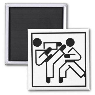 Martial Arts Figures Fridge Magnets