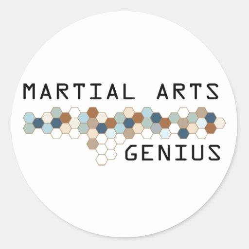 Martial Arts Genius Round Stickers