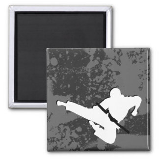 martial arts : grunge silhouettes : magnet