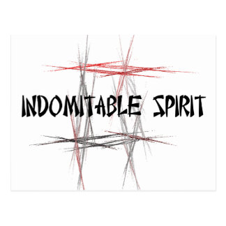 Martial Arts Indomitable Spirit Postcard