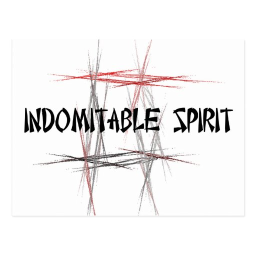 Martial Arts Indomitable Spirit Post Card
