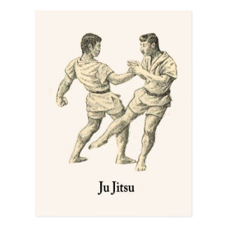 Martial Arts Ju jitsu 15 Postcard