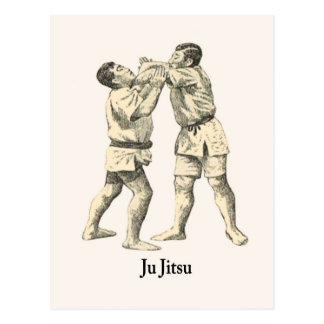 Martial Arts Ju jitsu 2 Postcard