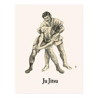 Martial Arts Ju jitsu 5 Postcard