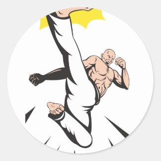 Martial Arts Kung Fu Karate Kick Sticker