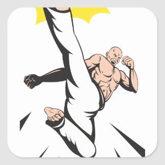 Martial Arts Kung Fu Karate Kick Stickers