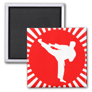 martial arts red rays magnet