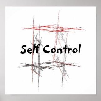 Martial Arts Taekwondo Tenets Self Control Poster