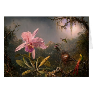 Martin Heade- Cattleya Orchid & Three Hummingbirds Greeting Card