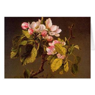Martin Johnson Heade - Apple Blossoms Greeting Card