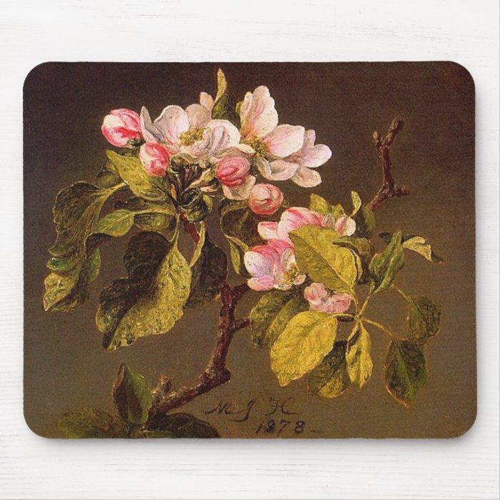 Martin Johnson Heade - Apple Blossoms Mouse Pad