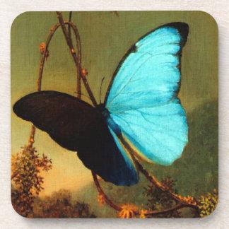 Martin Johnson Heade Blue Morpho Butterfly Drink Coasters