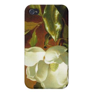 Martin Johnson Heade - magnolia en el terciopelo r iPhone 4/4S Fundas