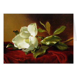 Martin Johnson Heade - Magnolia on Red Velvet Card