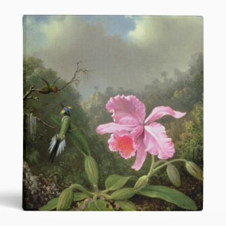 Martin Johnson Heade Orchid And Hummingbirds Binders