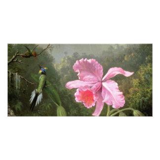 Martin Johnson Heade Orchid And Hummingbirds Photo Card