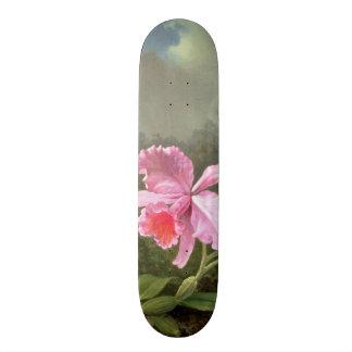 Martin Johnson Heade Orchid And Hummingbirds Skateboard Deck