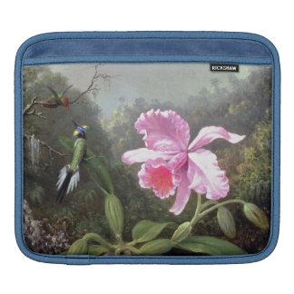 Martin Johnson Heade Orchid And Hummingbirds Sleeve For iPads