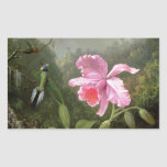 Martin Johnson Heade Orchid And Hummingbirds Rectangle Stickers