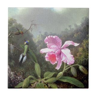 Martin Johnson Heade Orchid And Hummingbirds Tile