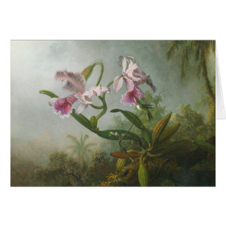 Martin Johnson Heade - Orchids and Hummingbirds Card