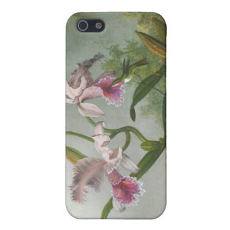 Martin Johnson Heade - Orchids and Hummingbirds Cover For iPhone 5
