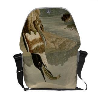 Martín pescador ceñido bolsa de mensajeria