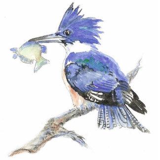 Martín pescador ceñido - pájaro - naturaleza, cole fotoescultura vertical