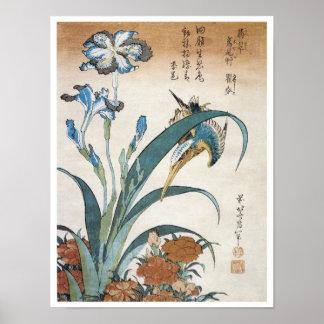 Martín pescador con los iris, Hokusai, 1834 Póster