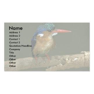 Martín pescador de la malaquita tarjetas de visita