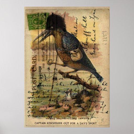 Martín pescador de la postal poster