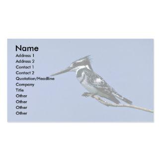 Martín pescador de varios colores plantillas de tarjeta de negocio