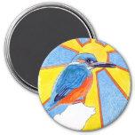 martín pescador (pájaro azul) imanes
