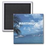 Martinique Travel Photo Souvenir Fridge Magnets
