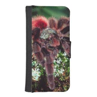 Martinique Tree Spider, Avicularia versicolor, iPhone SE/5/5s Wallet Case