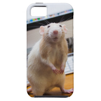 Marty Mouse iPhone Case - Standin' Tall!