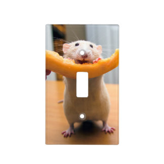 Marty Mouse Light Switch Cover - Canaloop