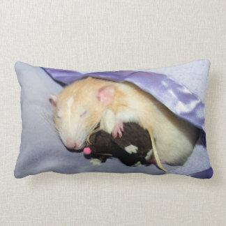 Marty que duerme con la almohada de RatTeddy 16x16