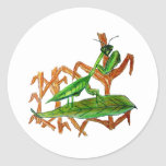 Marty the Praying Mantis Stickers