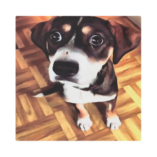 Marty The Soulful Eyed Dog Metal Print