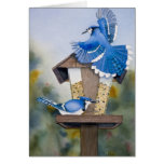Marvel and Bill's Blue Jay Cafe Greeting Card