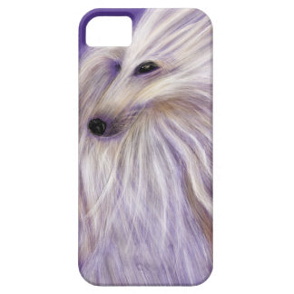 MARVELOUS AFGHAN HOUND BY DIVINA FOR IPHONE 5 iPhone SE/5/5s CASE