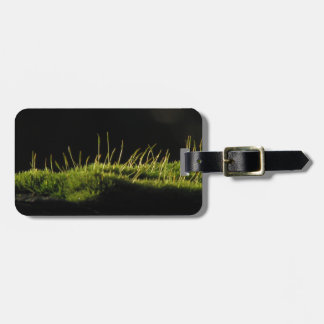 Marvelous Moss Tag For Luggage