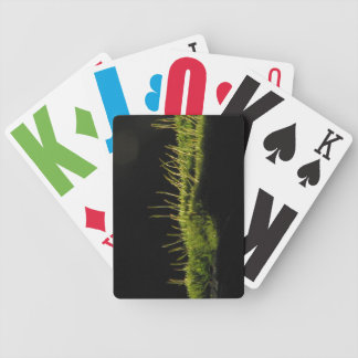 Marvelous Moss Bicycle Card Decks