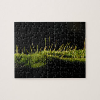 Marvelous Moss Jigsaw Puzzles