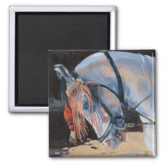 Marwari Horse Rajasthan 2010 Magnet