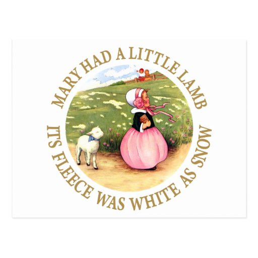 Mary Had a Little Lamb Post Cards