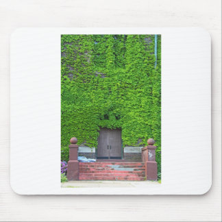 Mary Manse Doors- vertical Mouse Pad